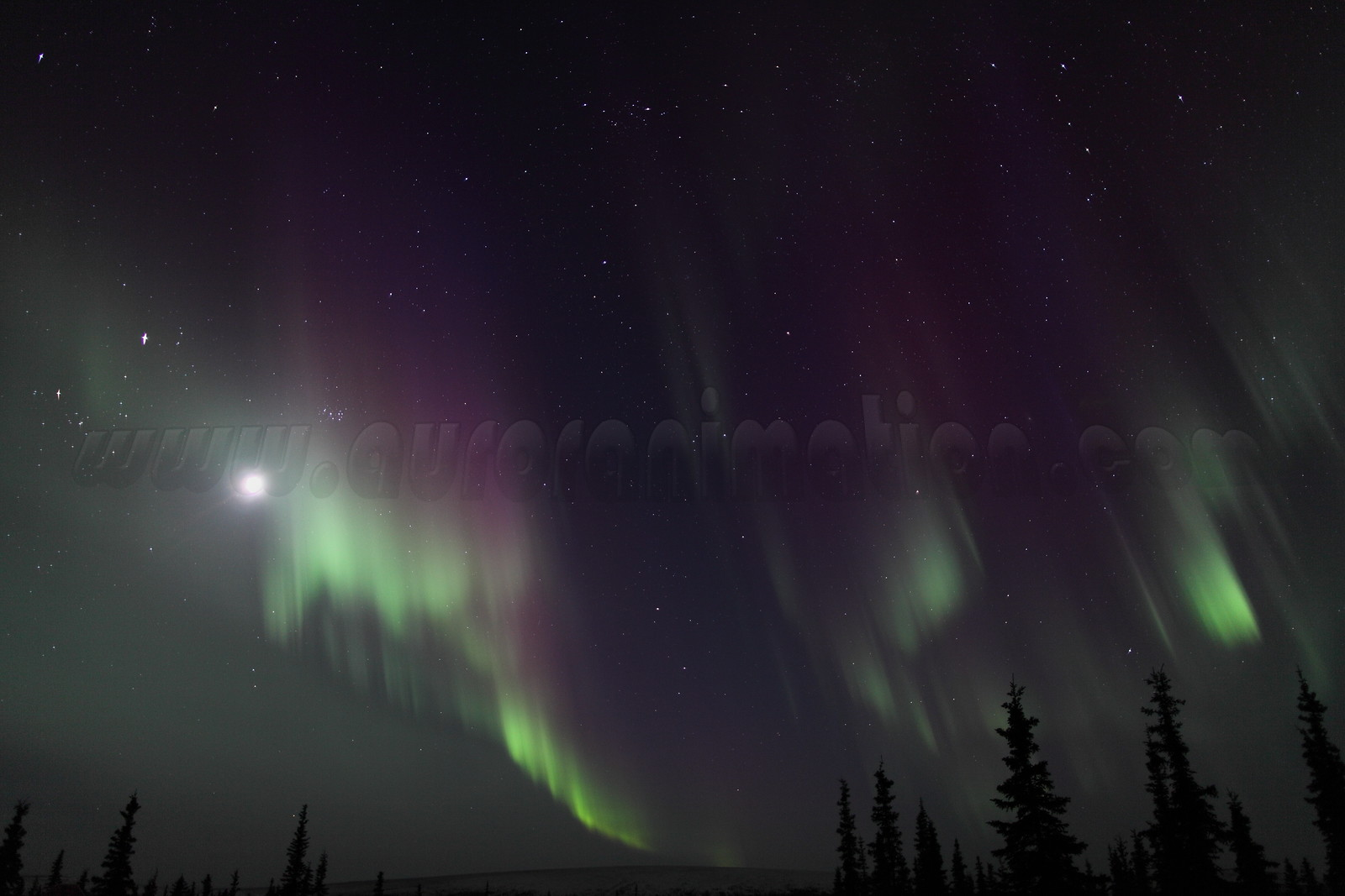 Northern Lights with Moon, Jupiter, Pleiades and constellations Taurus, Perseus and Cassiopeia at 11:23 PM on March 16, 2013 - Arctic Circle, Alaska <br /> <br /> Canon 5D MKII with EF 24mm f/1.4L II