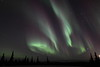 Colorful auroral curtains at 02:54 AM on March 17, 2013 - Arctic Circle, Alaska<br /> <br /> Canon 5D MKII with EF 24mm f/1.4L II