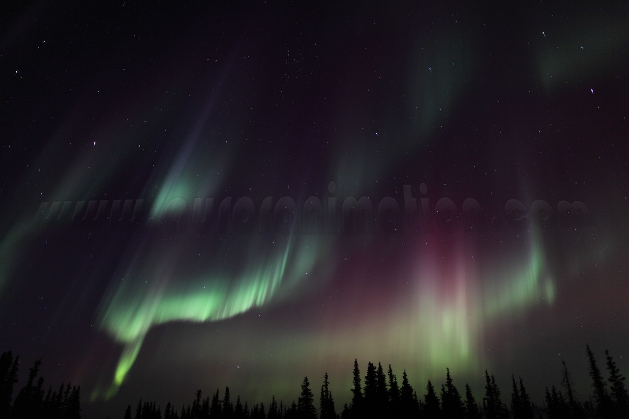 Colorful Northern Lights at the Arctic Circle in Alaska on March 17, 2013 - 01:09 AM<br /> <br /> Canon 5D MKII with EF 24mm f/1.4L II