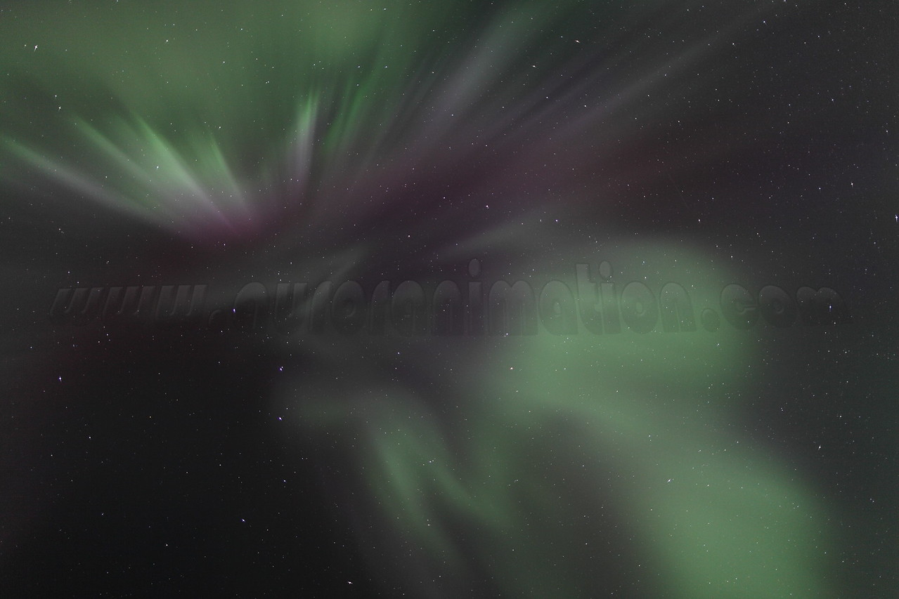 Delicate corona at 04:56 AM on March 17, 2013 - Arctic Circle, Alaska<br /> <br /> Canon 5D MKII with EF 24mm f/1.4L II
