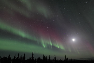 Northern Lights with Moon, Jupiter and Pleiades at 00:29 AM on March 17, 2013 - Arctic Circle, Alaska Constellations: Monoceros, Canis Minor, Gemini, Orion, Taurus, Auriga and Perseus  Canon 5D MKII with EF 24mm f/1.4L II