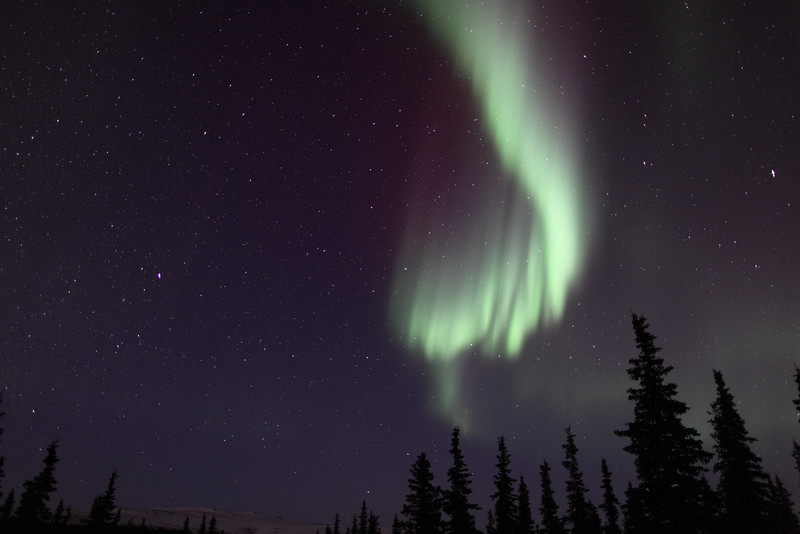 Colorful auroral curtain and Vega in Lyra at 00:54 AM on March 17, 2013 - Arctic Circle, Alaska<br /> Constellations: Lyra and Hercules<br /> <br /> Canon 5D MKII with EF 24mm f/1.4L II