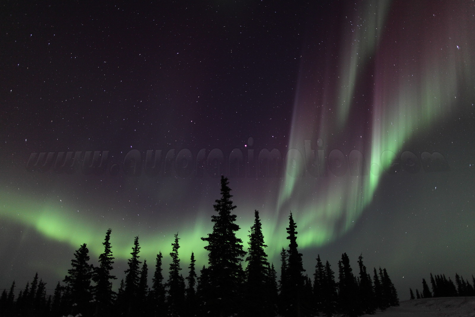 Northern Lights at the Arctic Circle in Alaska on March 17, 2013 - 00:09 AM<br /> <br /> Canon 5D MKII with EF 24mm f/1.4L II