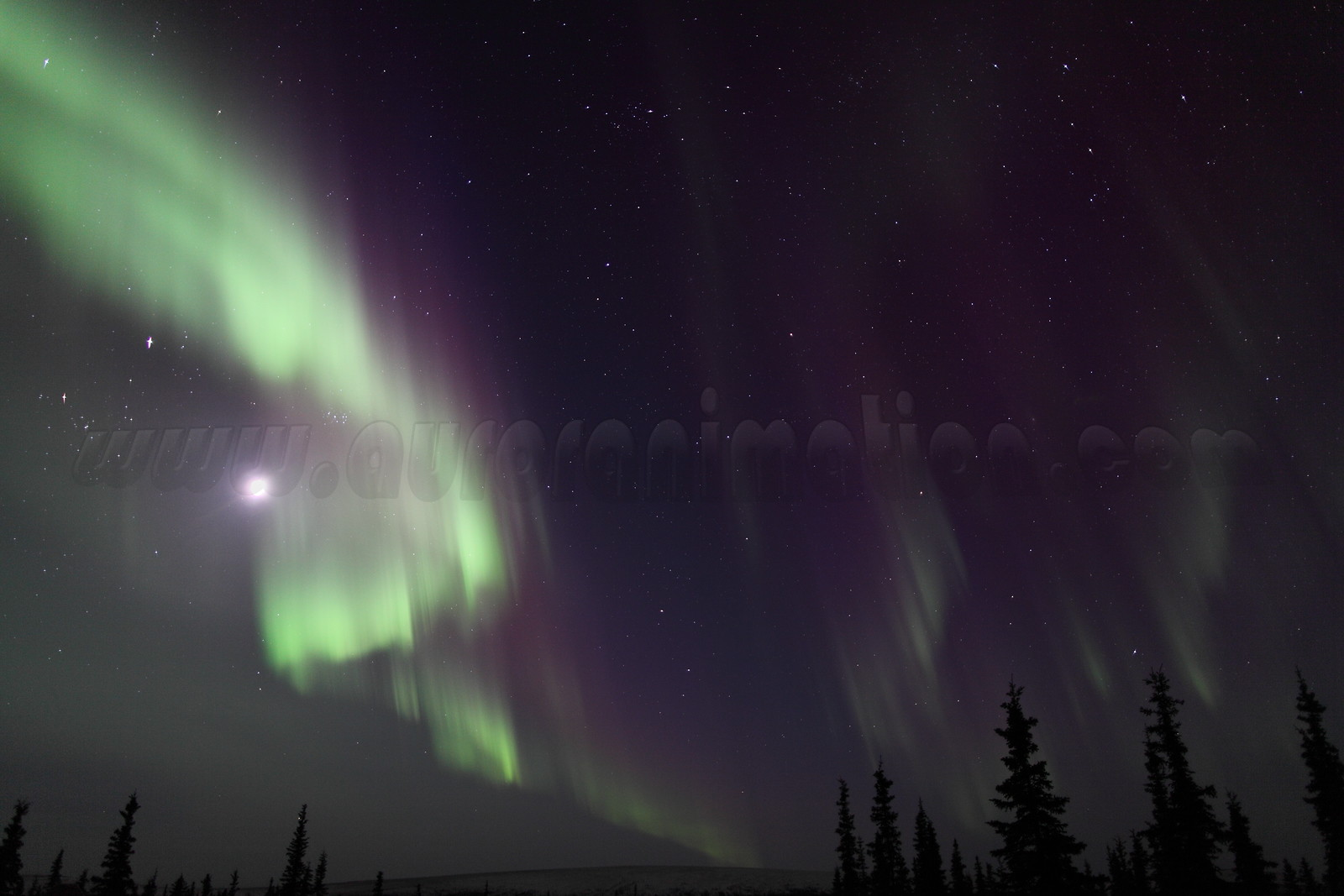 Northern Lights with Moon, Jupiter, Pleiades and constellations Taurus, Perseus and Cassiopeia at 11:25 PM on March 16, 2013 - Arctic Circle, Alaska <br /> <br /> Canon 5D MKII with EF 24mm f/1.4L II