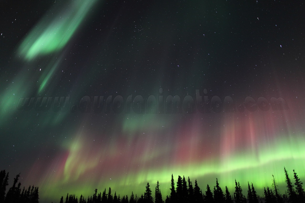 Colorful Northern Lights at the Arctic Circle in Alaska on March 17, 2013 - 01:05 AM<br /> <br /> Canon 5D MKII with EF 24mm f/1.4L II