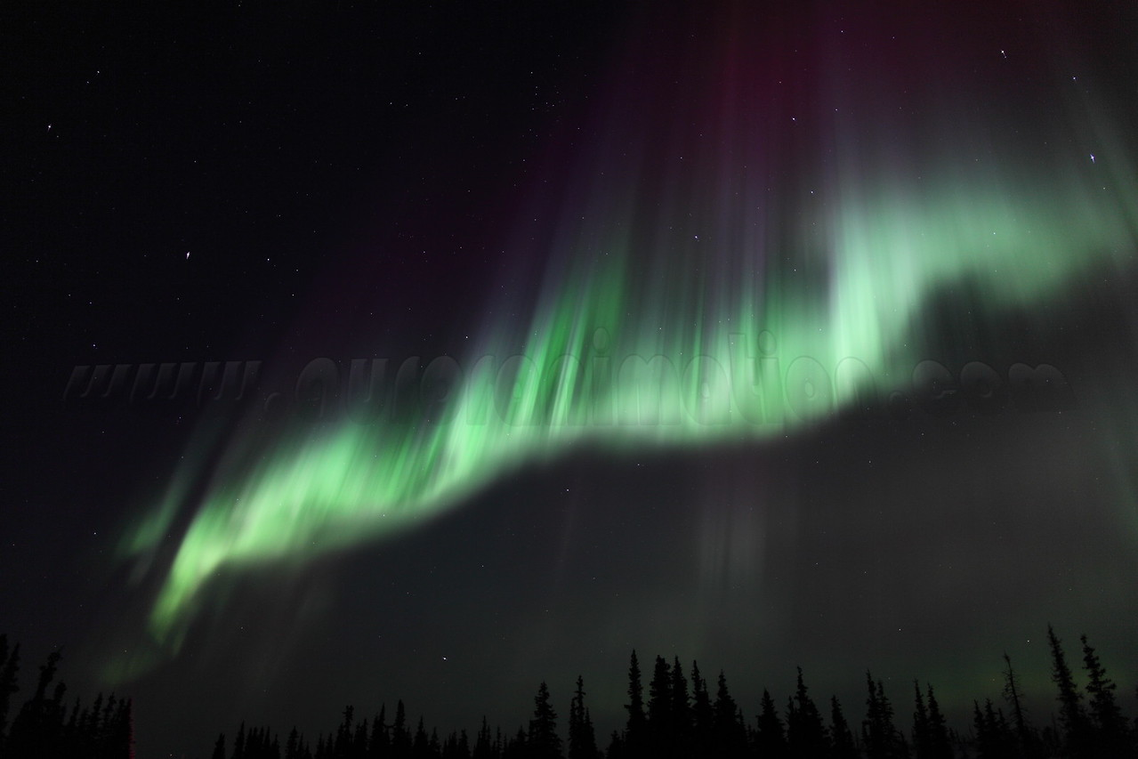 Colorful Northern Lights at the Arctic Circle in Alaska on March 17, 2013 - 01:16 AM<br /> <br /> Canon 5D MKII with EF 24mm f/1.4L II