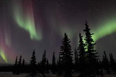 Northern Lights at the Arctic Circle in Alaska on March 17, 2013 - 00:12 AM  Canon 5D MKII with EF 24mm f/1.4L II