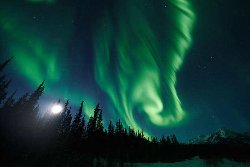 Aurora Photography