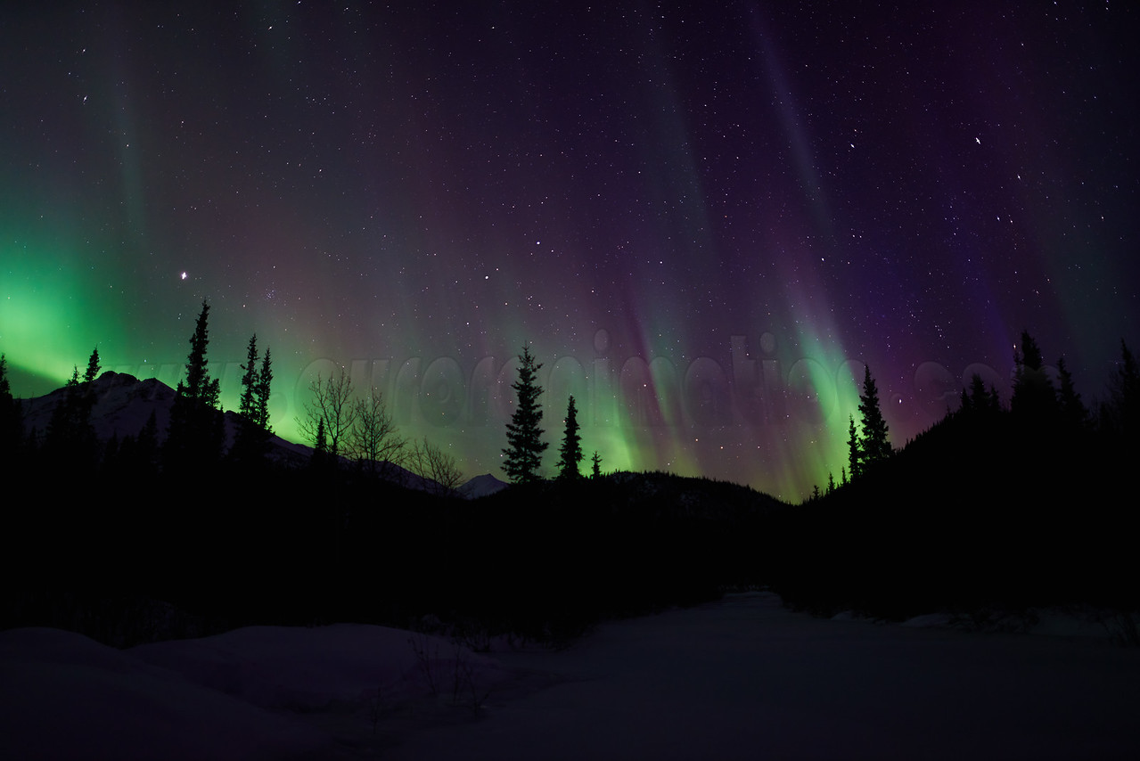 Northern Lights in Wiseman on March 23