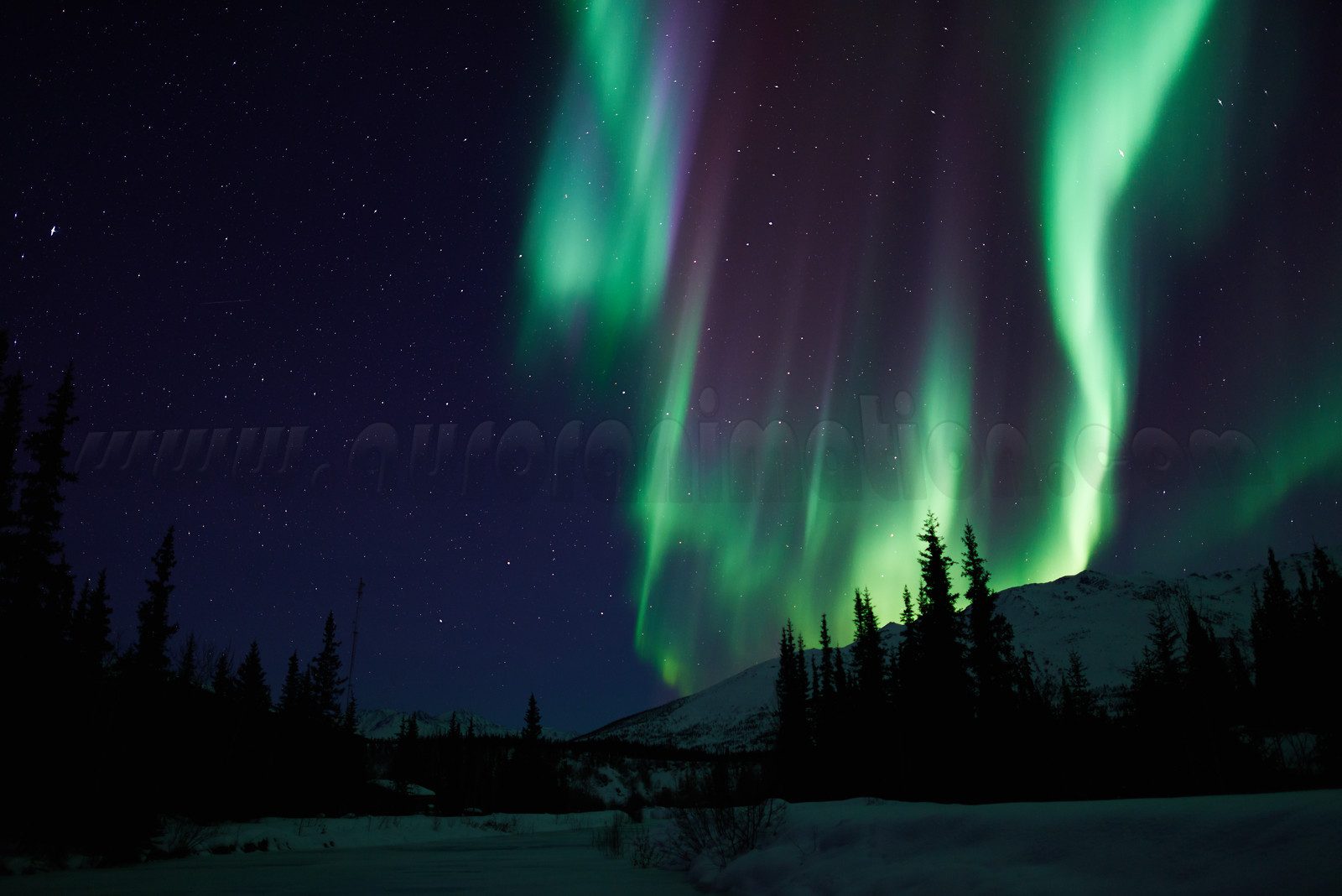 New Photo Gallery: Aurora Reflections - Wiseman, March 23 2015