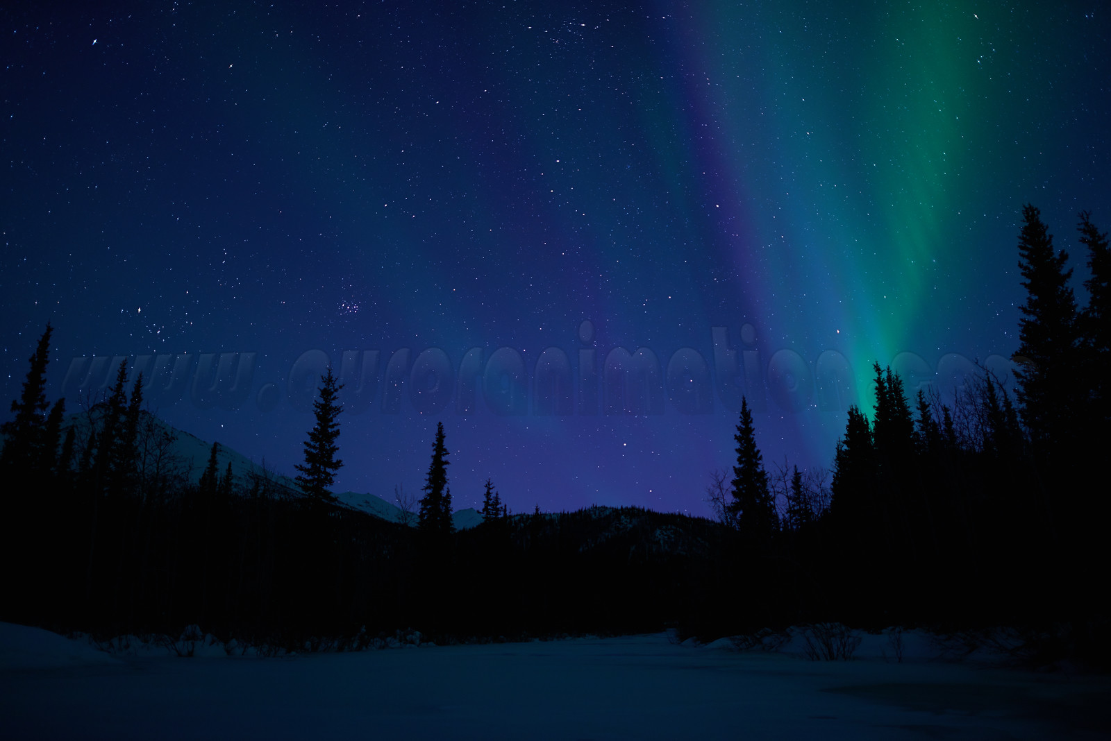 Northern Lights in Wiseman on March 22