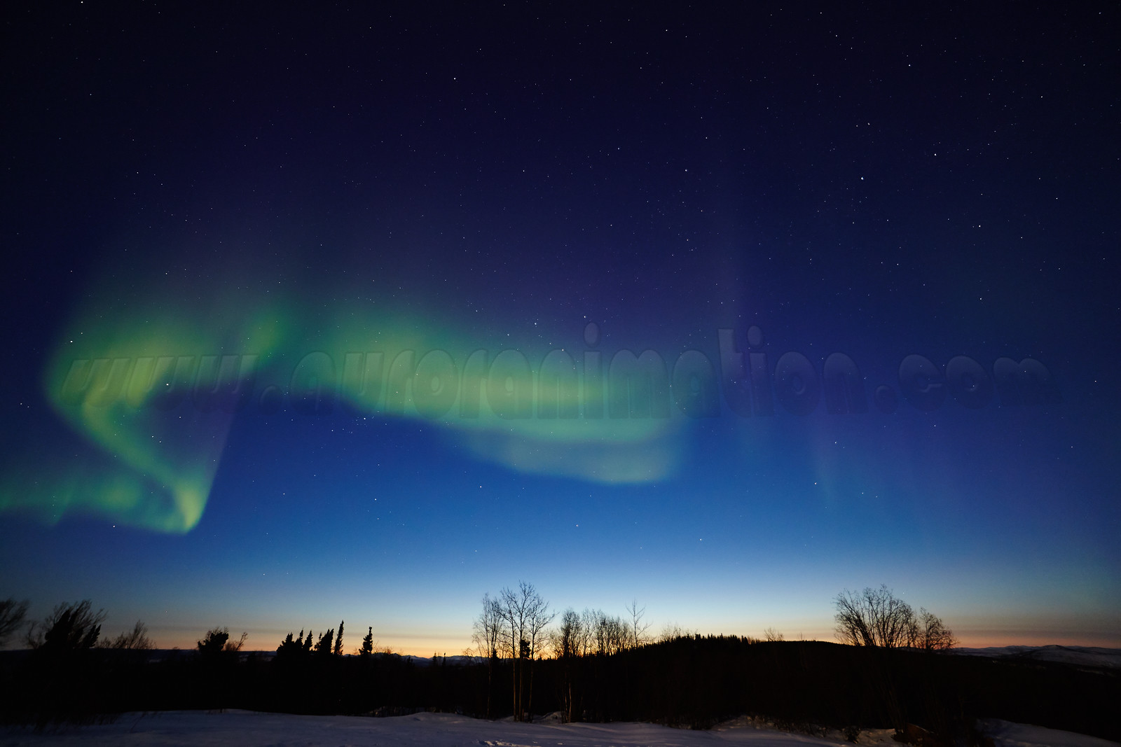 Northern Lights at Dawn