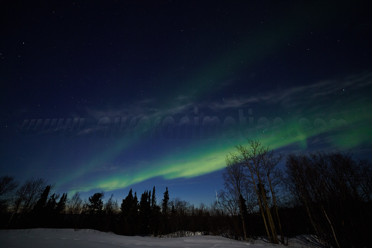Northern Lights and a Meteor