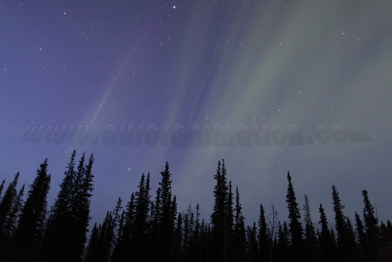 Auroral display captured on Vernal Equinox at Koyukuk river in Wiseman, Alaska at 05:54 AM on March 20, 2013. The Wiseman Village is located within Alaska's Brooks Range at latitude 67.4 and longitude -150.1<br /> <br /> Canon 5D MKII with EF 24mm f/1.4L II lens
