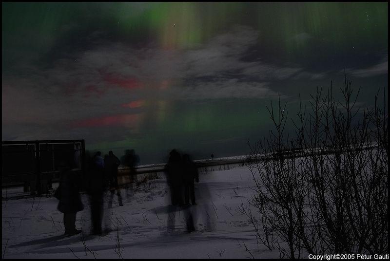 Northern Lights (#3259)
