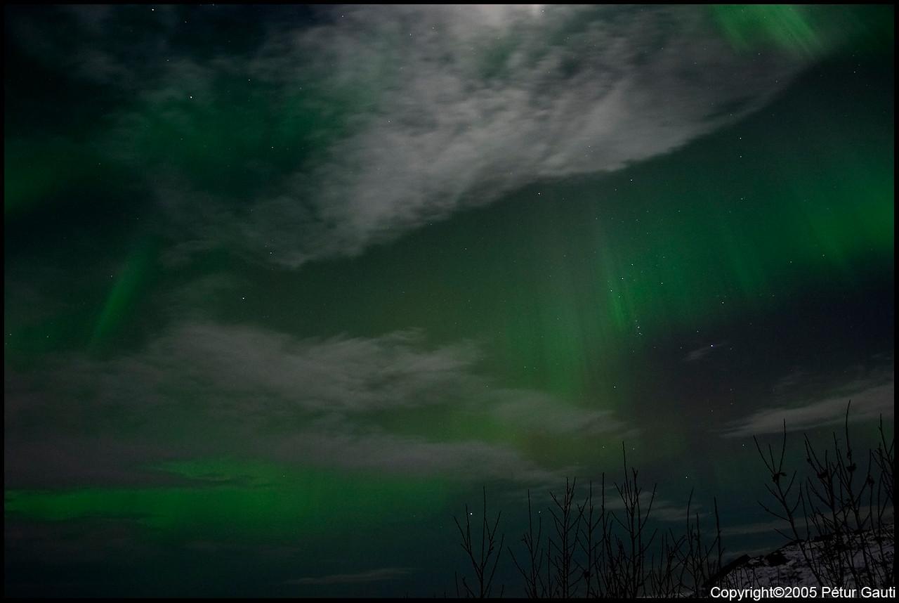 Northern Lights (#3245)