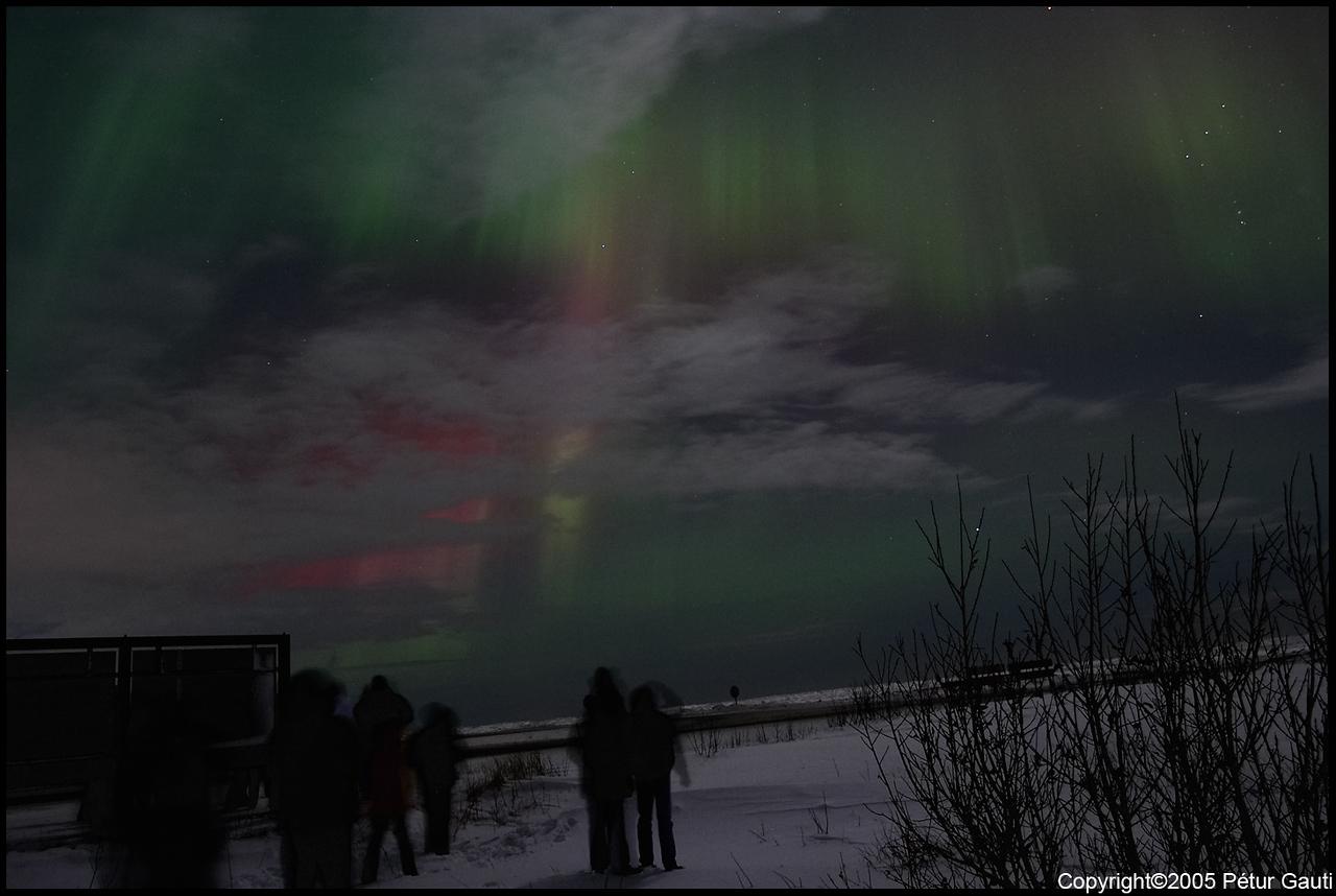 Northern Lights (#3258)