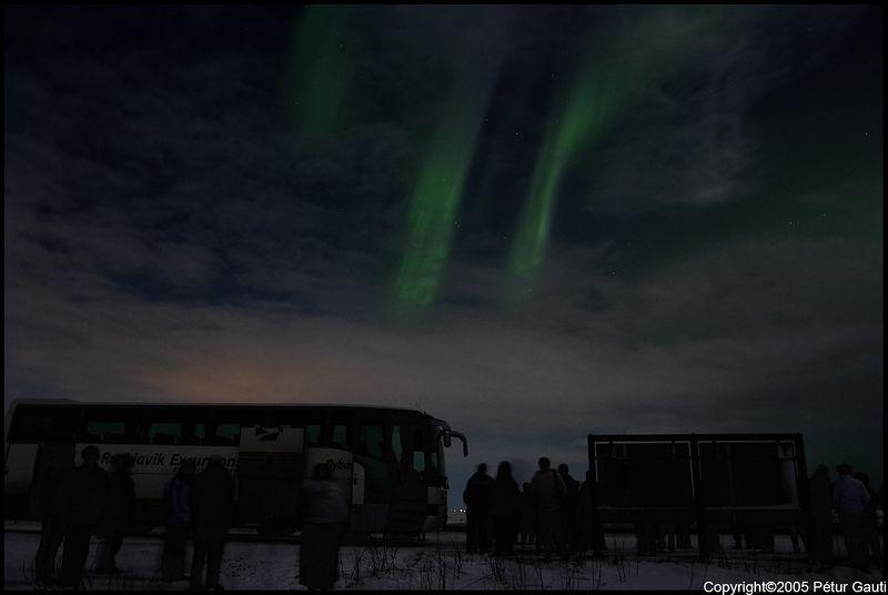 Northern Lights (#3265)