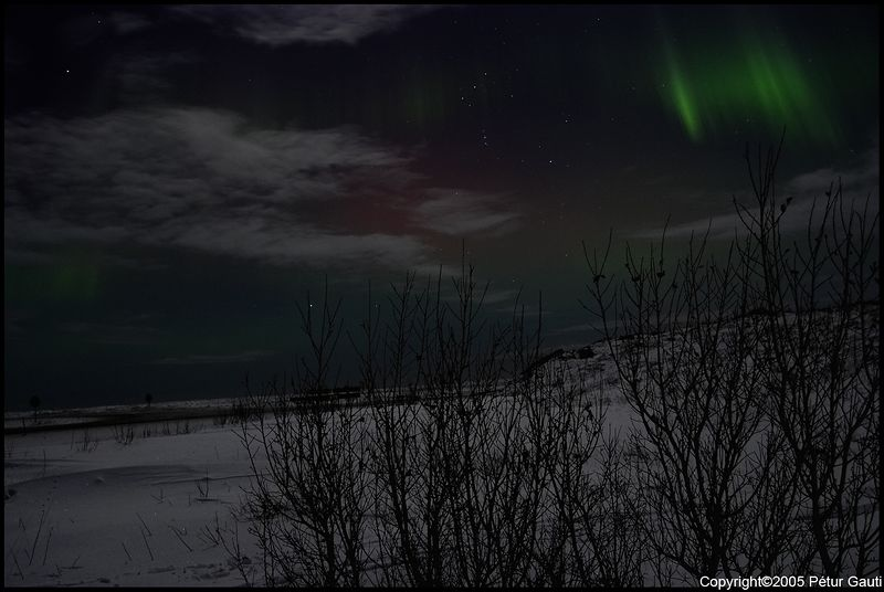 Northern Lights (#3233)