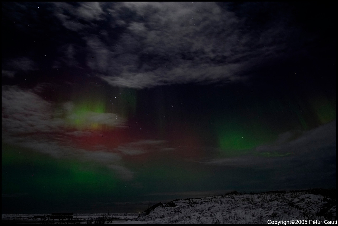 Northern Lights (#3219)