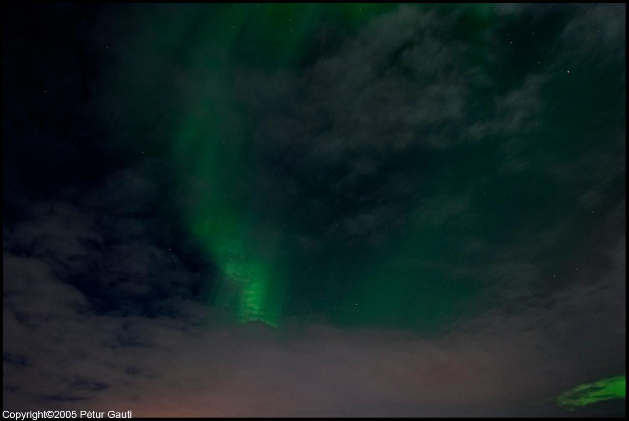 Northern Lights (#3251)
