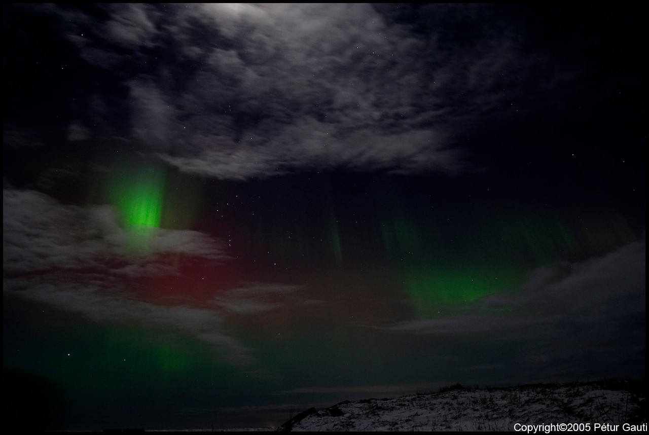Northern Lights (#3222)