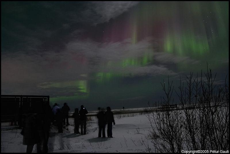 Northern Lights (#3253)