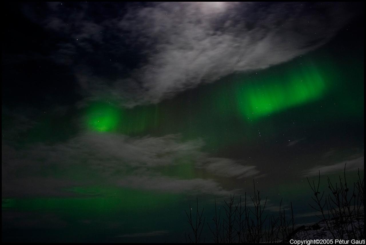 Northern Lights (#3241)