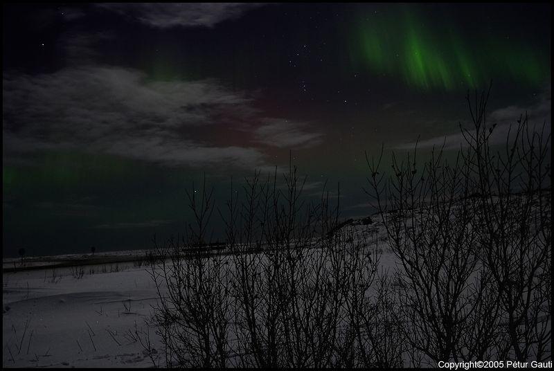 Northern Lights (#3235)