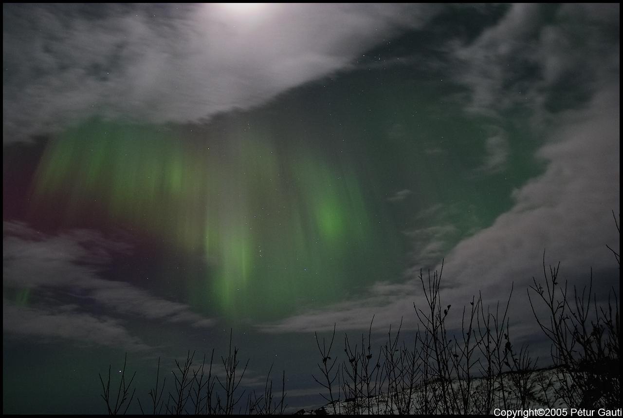 Northern Lights (#3255)