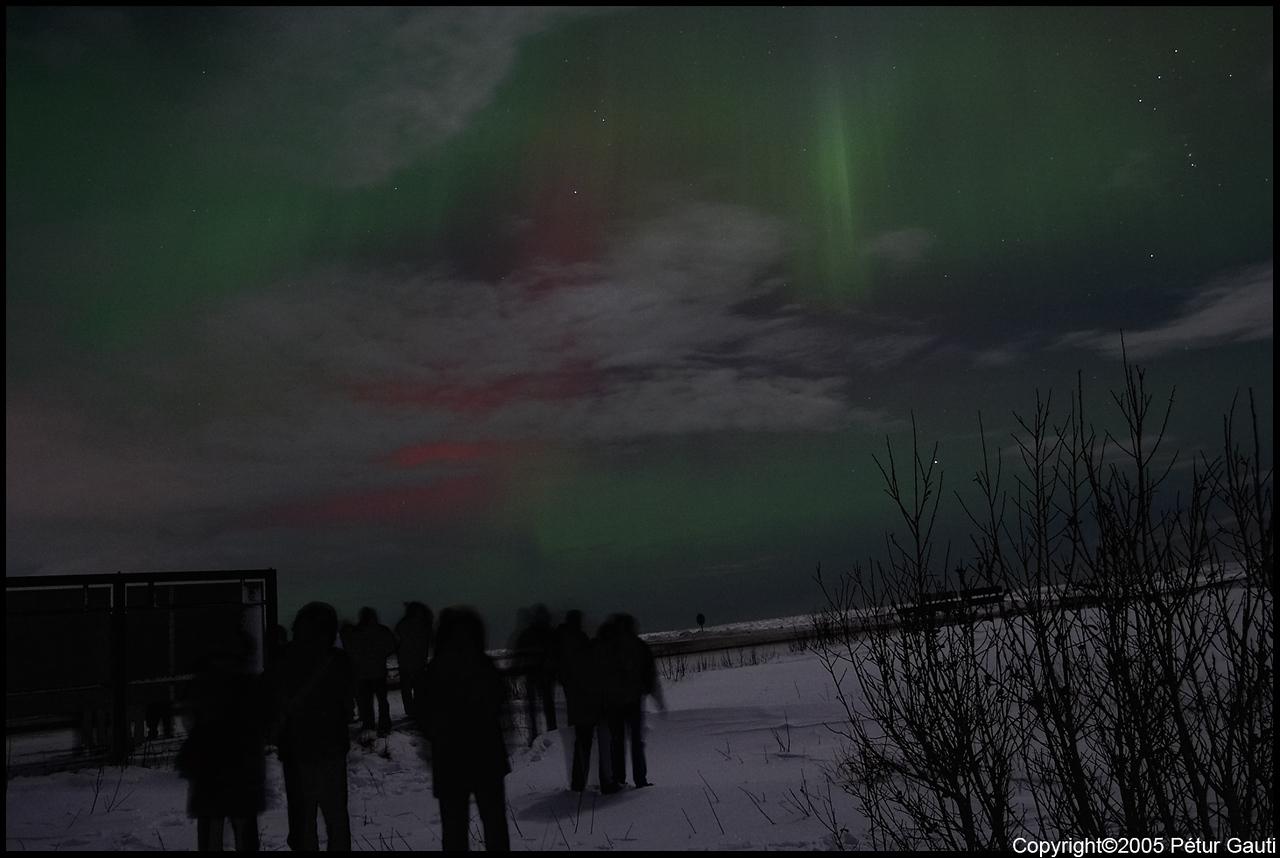 Northern Lights (#3264)