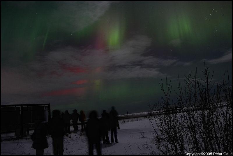 Northern Lights (#3260)