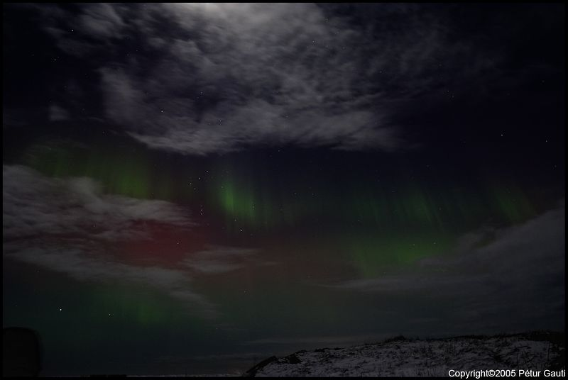 Northern Lights (#3224)
