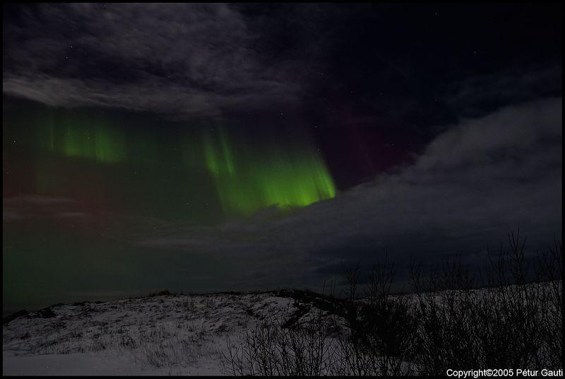 Northern Lights (#3213)