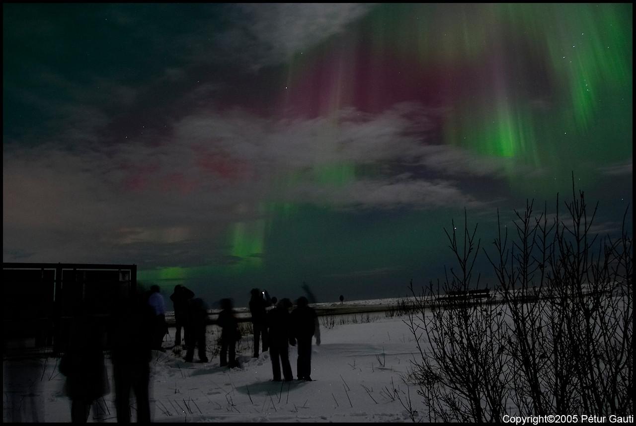 Northern Lights (#3254)