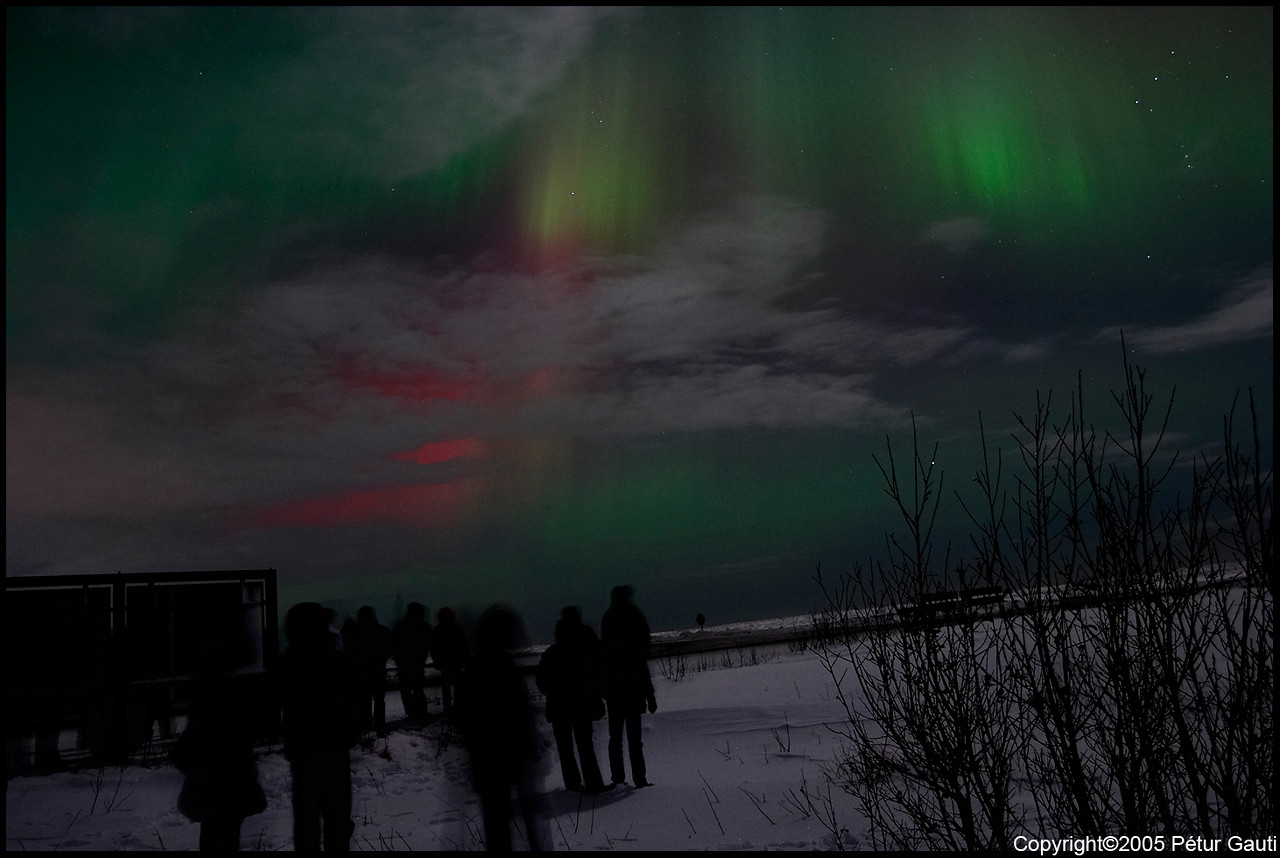 Northern Lights (#3261)