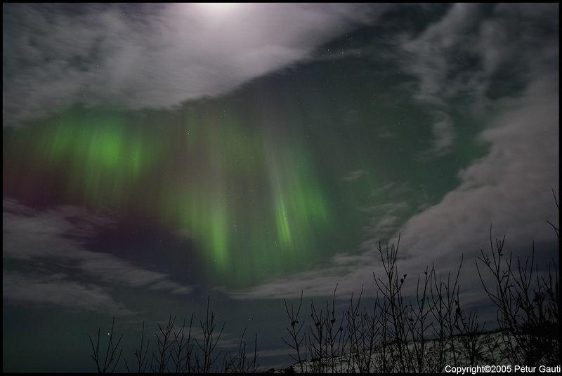 Northern Lights (#3256)