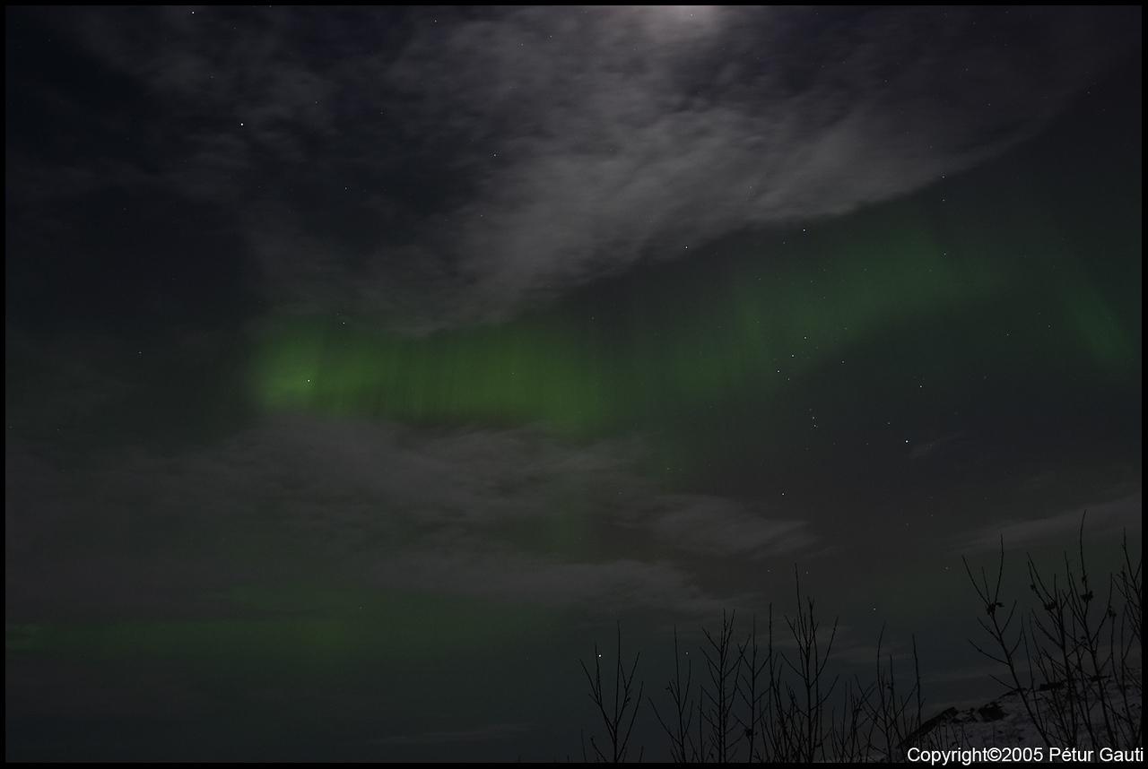 Northern Lights (#3240)