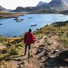 Person walking his cat of Kvalvika Beach Trail, Fredvang, Norway. Sept. 22, 2019