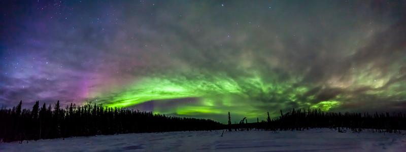 Full Spectrum Auroras