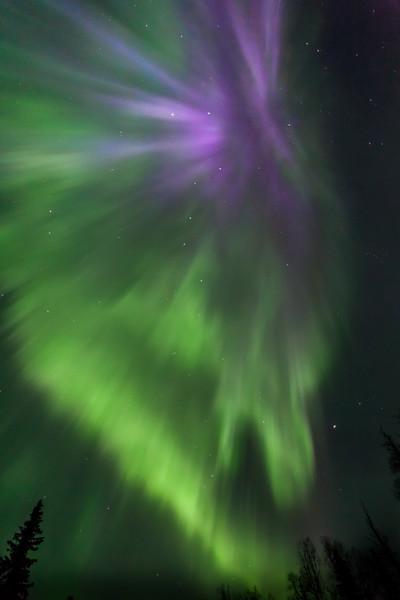 April 16 Aurora-7031