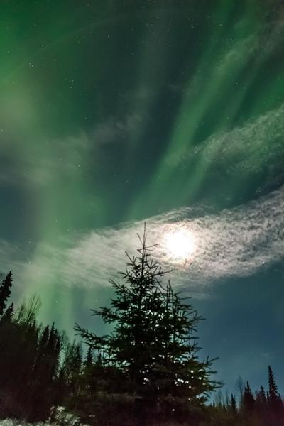 Moonlight Aurora-7601
