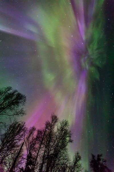 Auroral Coronas-2