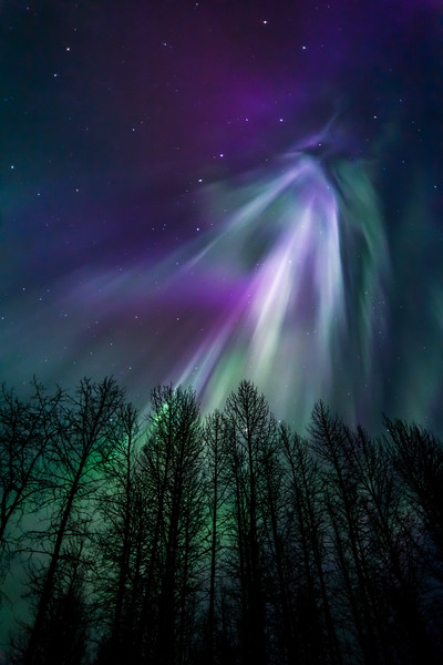 Amazing April Aurora