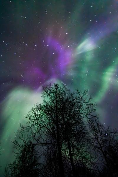 April 16 Aurora-7445