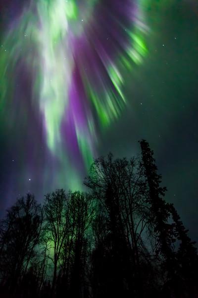 April 16 Aurora-7042