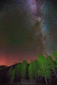 """Woodland Glow,"" The Aurora Borealis and Milky Way over Black Butte and Lodgepole Pines, Yellowstone National Park"