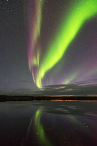 Purple and green aurora colors, Yellowknife Canada