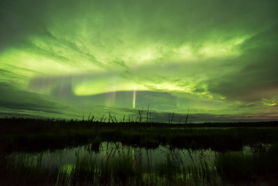 Aurora storm with purple picket, Northwest territories Canada