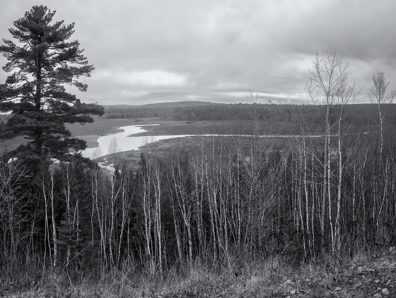 Aurora Overlook on a Cloudy/Foggy Afternoon in Black and White
